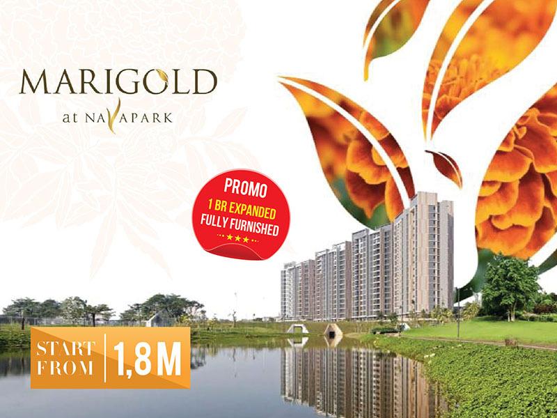 Marigold-Navapark-mobile